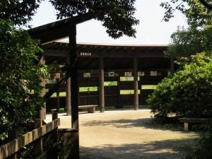 東観察広場 東京港野鳥公園
