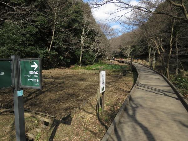 東高根森林公園 (5)