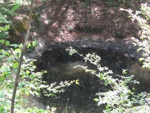 伊香保森林公園 (3)