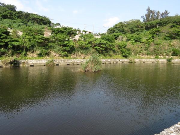 金城ダム (2)