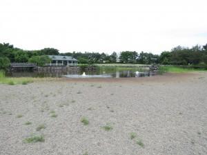 鳥屋野潟 (2)