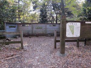 井の頭公園 小鳥の森