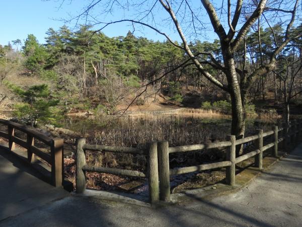 小木津山森林公園