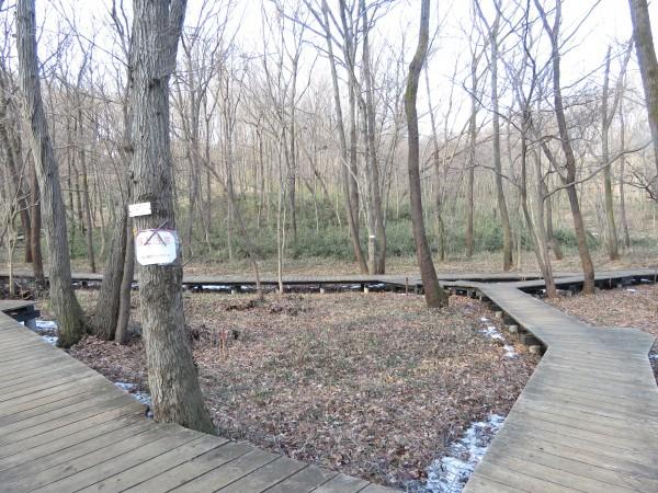 ルリビタキの生息地 小宮公園