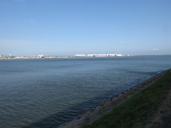 コアジサシの生息地 多摩川河口付近