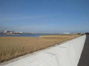 多摩川河口付近 (2)