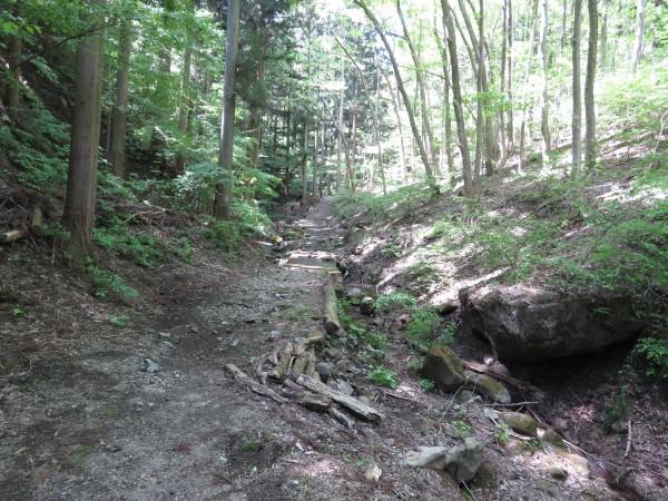 小根山森林公園