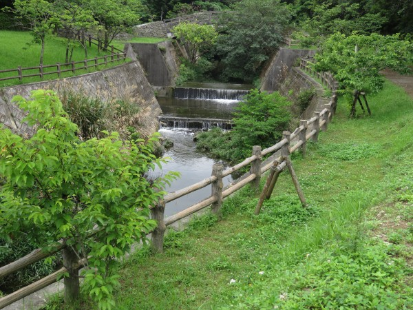 浦添大公園 (1)