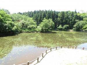 秋葉公園 (2)
