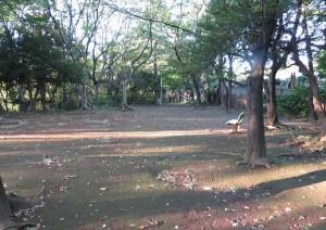 本門寺公園