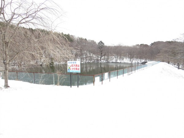 ベニマシコの生息地 井冨溜池