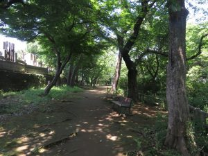 池上本門寺 (1)