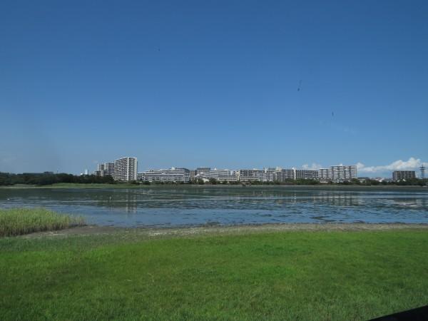 谷津干潟 観察センターからの眺め