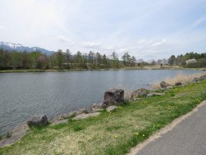 八ヶ岳ふれあい公園 池