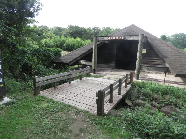 東京港野鳥公園 4号観察小屋 冬の猛禽類の観察におすすめの探鳥地