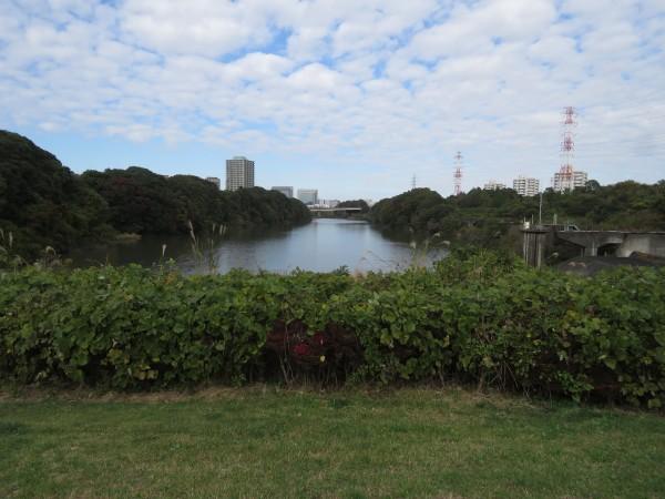 北総花の丘公園 戸神川防災調整池