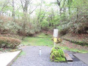 須山口登山歩道の野鳥 弁当場の水場