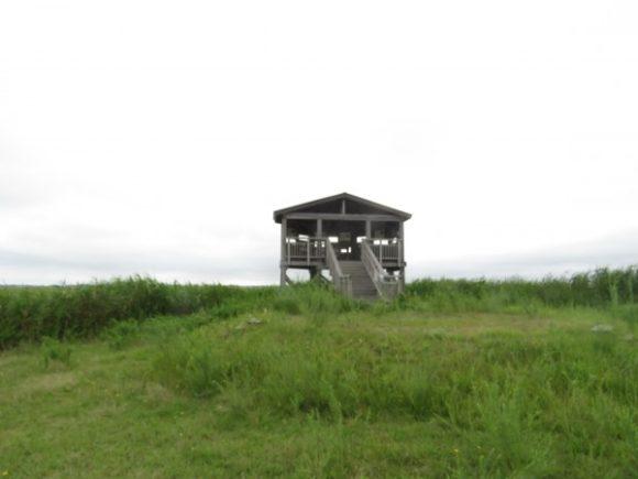 野鳥観察小屋