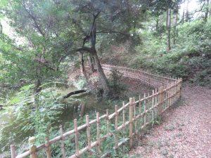 トラツグミの生息地 坂田ヶ池総合公園