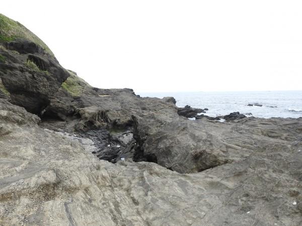 イソヒヨドリの生息地 城ヶ島