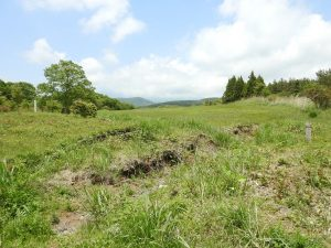 オオジシギの生息地 富士山須山口登山歩道