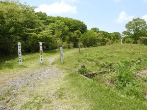 イカルの生息地 富士山須山口登山歩道