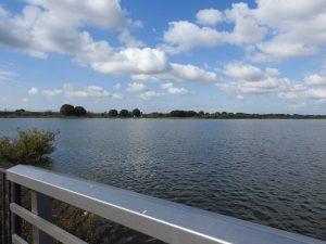 ハジロカイツブリの生息地 渡良瀬遊水地 谷中湖