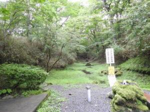 夏の富士山おすすめ探鳥地 富士山須山口登山歩道