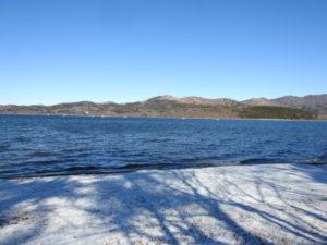 カンムリカイツブリの生息地 山中湖