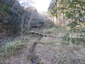 ウソが見られる生息地 桐生自然観察の森