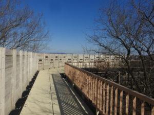 野鳥観察壁