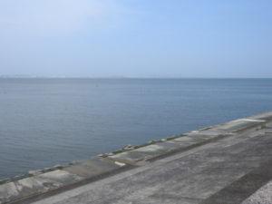 ウミアイサの生息地 日の出海岸