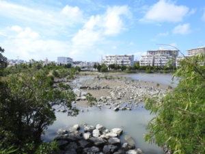 比屋根湿地 湿地