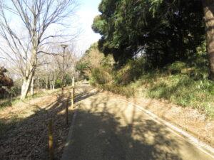 シロハラの生息地 三ッ池公園