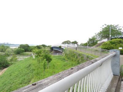 イワツバメの生息地 三段の滝